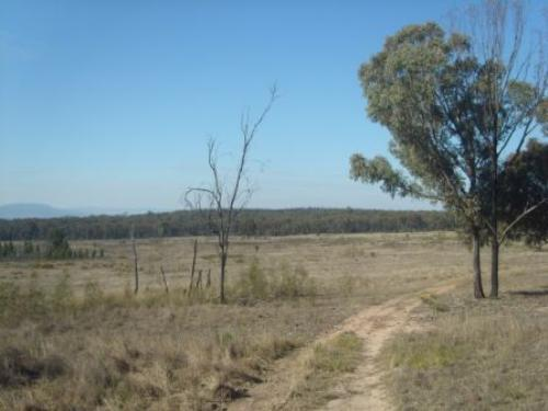 Property For Sale Coolah 2843 NSW 12