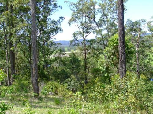 Property For Sold Bulahdelah 2423 NSW 2