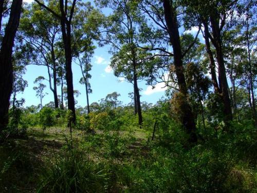 Property For Sold Bulahdelah 2423 NSW 4