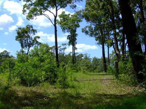 Property For Sold Bulahdelah 2423 NSW 9