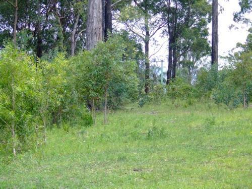 Property For Sold Bulahdelah 2423 NSW 10