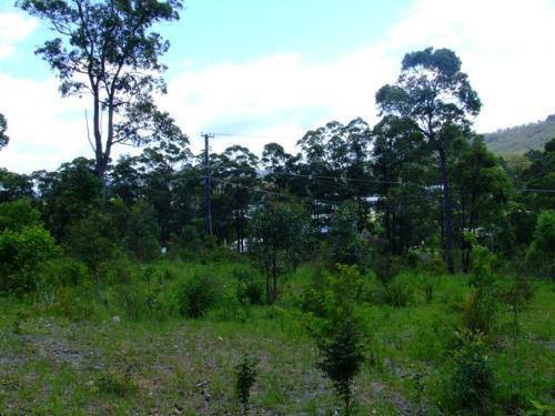 Property For Sold Bulahdelah 2423 NSW 11