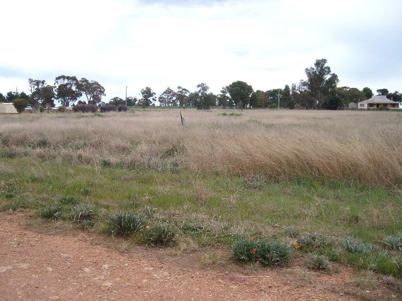 Property For Sale Lot 176 Boree St Grong Grong NSW 2652 4