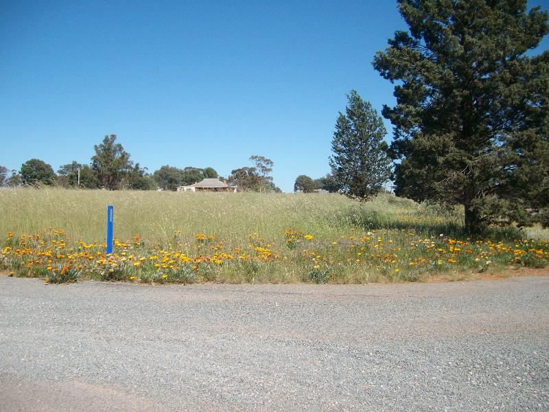 Property For Sale Lot 176 Boree St Grong Grong NSW 2652 5