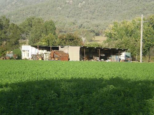Property For Sold Tamworth 2340 NSW 4