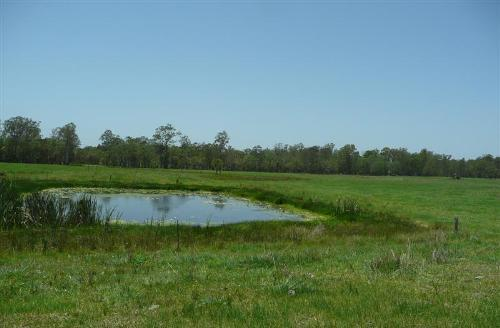 Property For Sold Whiporie 2469 NSW 7