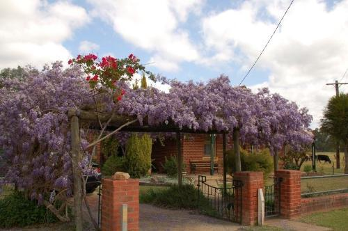 Property For Sale Culcairn 2660 NSW 2