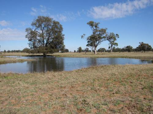 Property For Sold Dubbo 2830 NSW 1
