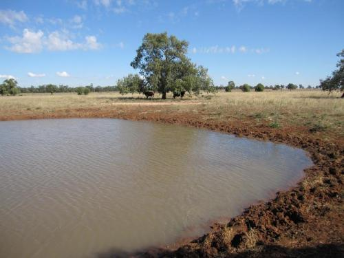 Property For Sale Dubbo 2830 NSW 4
