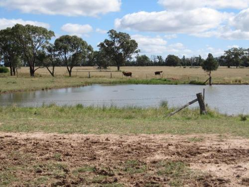 Property For Sale Dubbo 2830 NSW 5