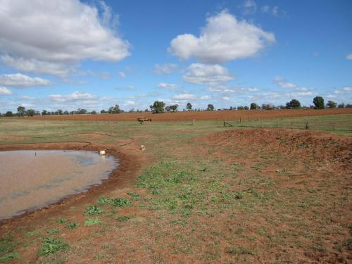 Property For Sale Dubbo 2830 NSW 6