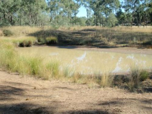 Property For Sale Coonabarabran 2357 NSW 4