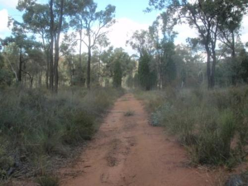 Property For Sale Coonabarabran 2357 NSW 7