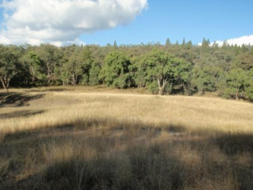 Property For Sale Coonabarabran 2357 NSW 12