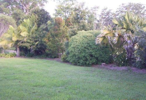 Property For Sold Gumma 2447 NSW 10