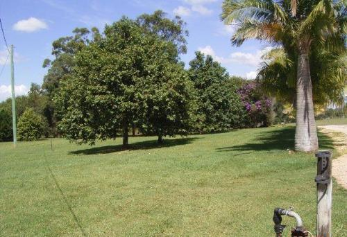 Property For Sold Gumma 2447 NSW 11