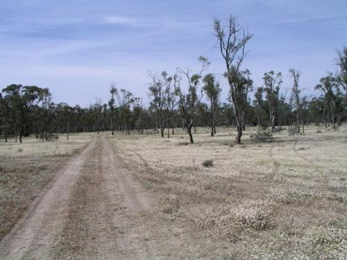 Property For Sold Barham 2732 NSW 1