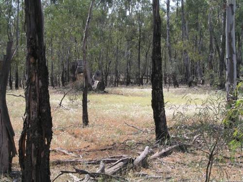Property For Sold Barham 2732 NSW 3