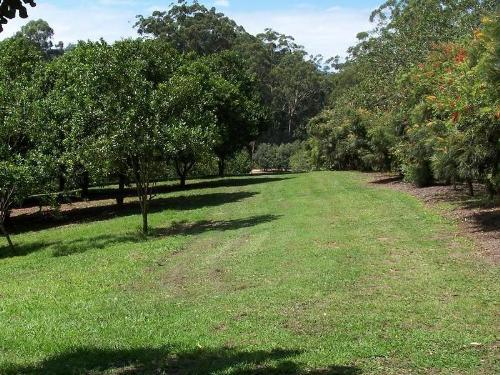 Property For Sold Valla 2448 NSW 6