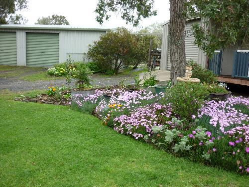 Property For Sale Tenterfield 2372 NSW 4