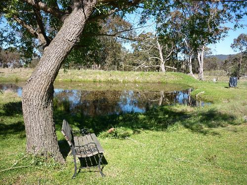 Property For Sale Tenterfield 2372 NSW 5