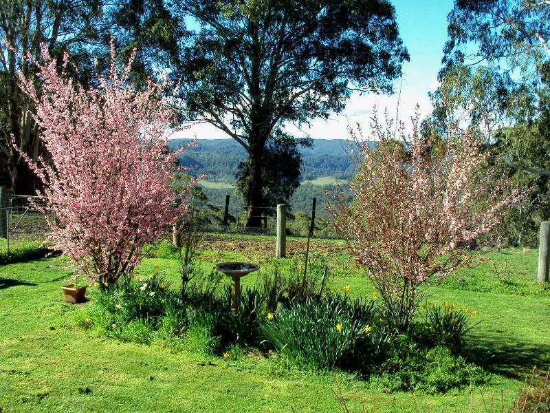 Property For Sold Hanging Rock 2340 NSW 4