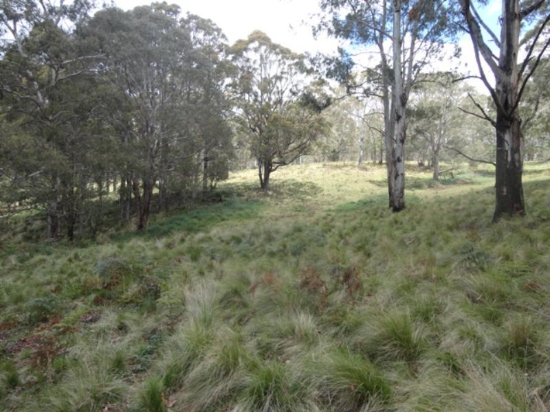 Property For Sold Hanging Rock 2340 NSW 8