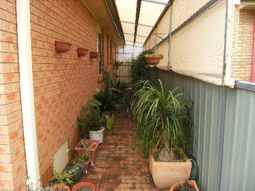 Property For Sold Forbes 2871 NSW 12