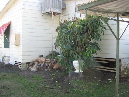 Property For Sale Walgett 2832 NSW 3