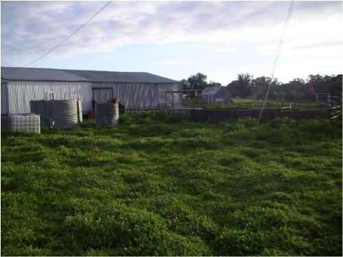 Property For Sold Cowra 2794 NSW 4