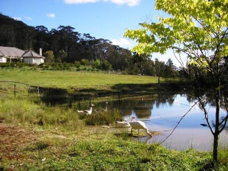 Property For Sold Glencoe 2365 NSW 2