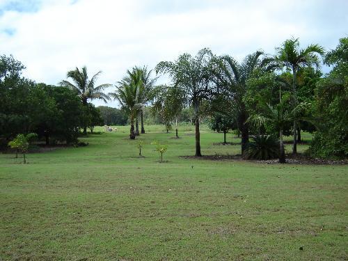 Property For Sale Allingham 4850 QLD 9
