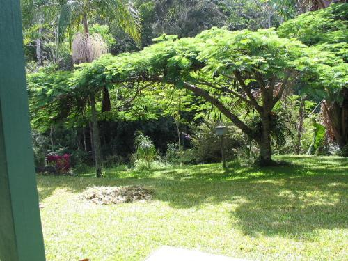 Property For Sold Eumundi 4562 QLD 3