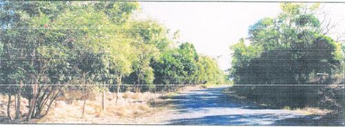 Property For Sale Cape Hillsborough 4740 QLD 3