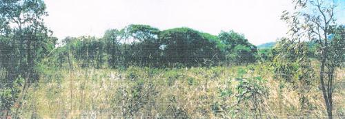 Property For Sale Cape Hillsborough 4740 QLD 4