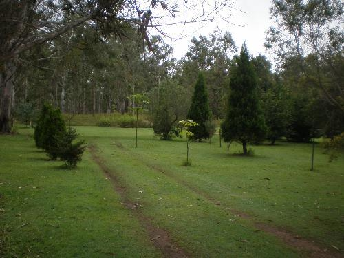 Private Business For Sale Herberton 4872 QLD 4