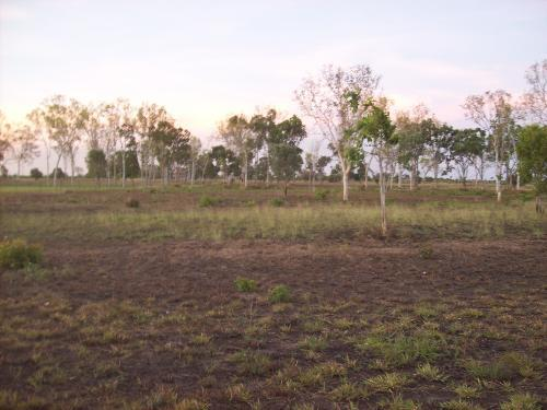 Home Hill 4806 QLD