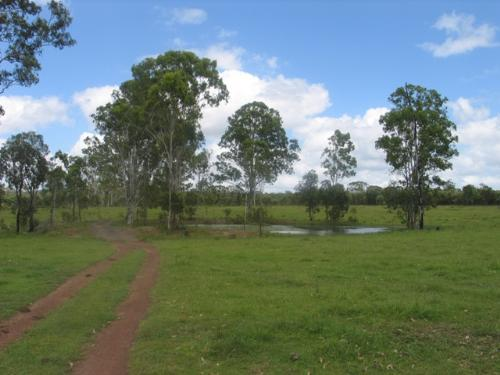 Property For Sale Taunton 4674 QLD 8