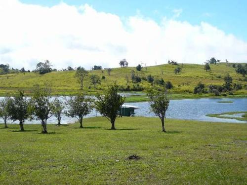 Property For Sale Yungaburra 4884 QLD 10