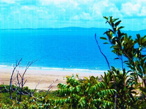 Private Business For Sale Yeppoon 4703 QLD 5