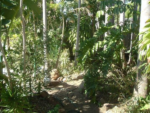 Property For Sale Holmview 4207 QLD 7