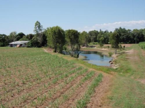 Property For Sale Ingham 4850 QLD 1