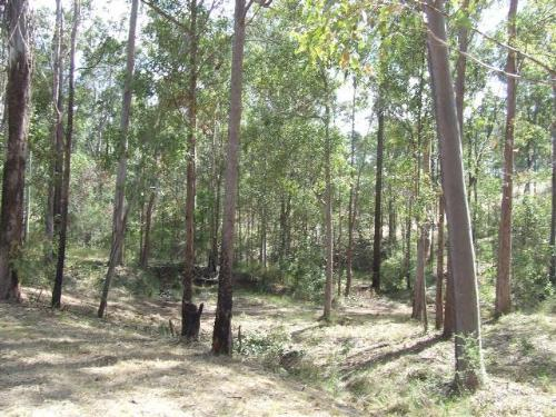 Property For Sale Gympie 4570 QLD 5
