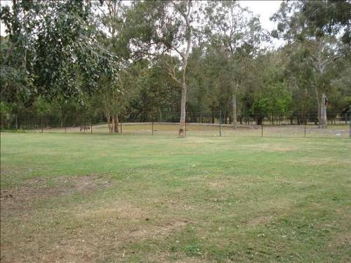 Property For Sale Park Ridge 4125 QLD 7