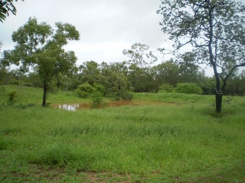Property For Sale Charters Towers 4820 QLD 1