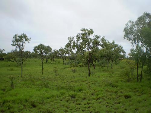 Property For Sale Charters Towers 4820 QLD 4