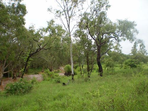 Property For Sale Charters Towers 4820 QLD 5