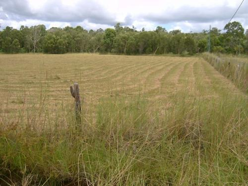 Property For Sale Cootharaba 4565 QLD 4