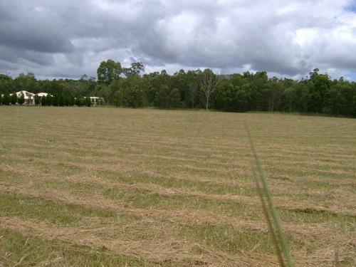 Property For Sale Cootharaba 4565 QLD 5