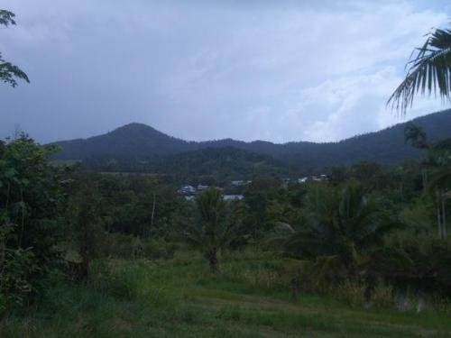 Property For Sale Innisfail 4860 QLD 4